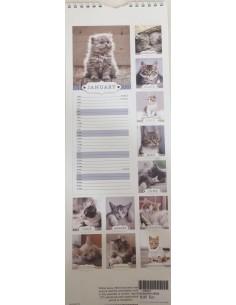 Large Cat Calendar 2018