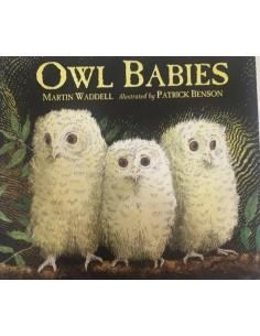 Owl Babies_Martin Waddel